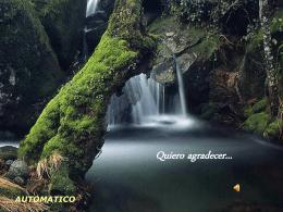 Serie: Paseos de Eugenio Herrera