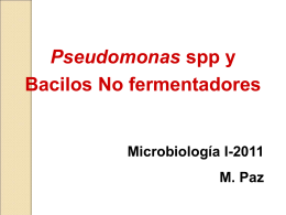 Pseudomonas - Microinmunoumg's Blog | Just another