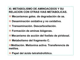 www.calvo.qb.fcen.uba.ar