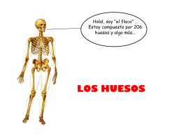Diapositiva 1 - Equipos de Salud