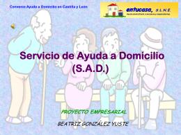 Servicio de Ayuda a Domicilio (S.A.D.)