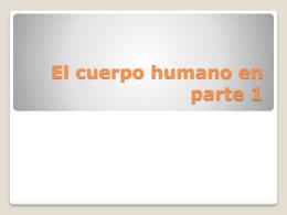 El cuerpo humano en parte 1