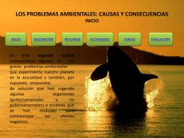 LOS PROBLEMAS AMBIENTALES: CAUSAS Y …