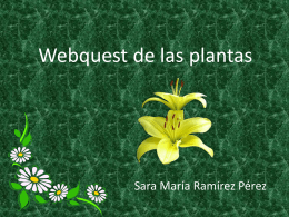 Webquest de la plantas