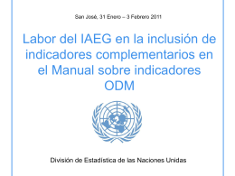 IAEG work on additional indicators for the Handbook on …
