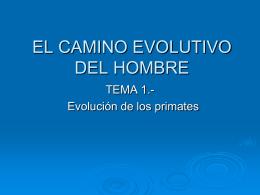 EL CAMINO EVOLUTIVO DEL HOMBRE