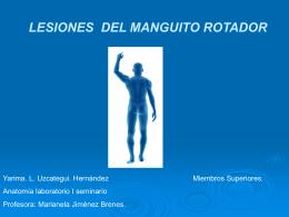 Diapositiva 1 - Fisioterapia