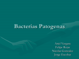 Bacterias Patogenas - BIOLOGIA | Just another WordPress