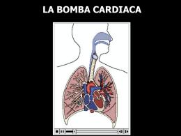 LA BOMBA CARDIACA - Facultad de Ciencias de la Salud