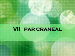 VII PAR CRANEAL - Semiologia Dr: Angel Martin Cruz | This