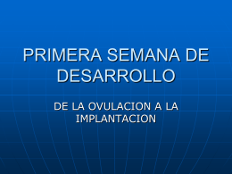 PRIMERA SEMANA DE DESARROLLO