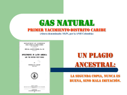 GAS NATURAL PRIMER YACIMIENTO