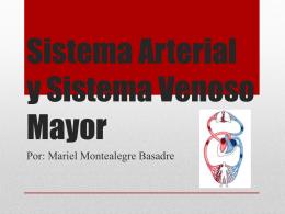 Sistema Arterial y Sistema Venoso Mayor
