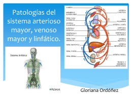 Patologias del sistema arterioso mayor, venoso mayor y