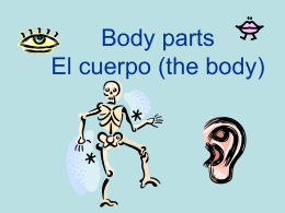Body parts El cuerpo (the body)