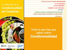 Todo lo que hay que saber sobre Condicionalidad (PPT …