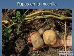 La bolsa de papas - PowerPoints .org