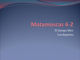 Matamoscas 4-2 - Arlington Independent School District