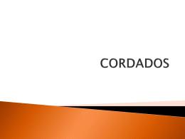 Diapositiva 1 - cursozoologia