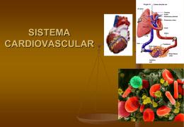 FISIOLOGIA COMPARADA - Enfermeriavespertina's Blog
