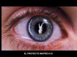 El Proyecto Matriz 23 - MERCADOS ALIMENTARIOS, …