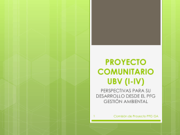 PROYECTO COMUNITARIO UBV (I-IV)