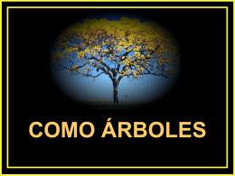 www.elalmanaque.com