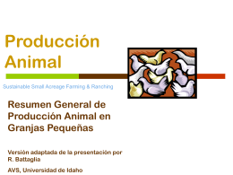 Session 3-4: Animal Production