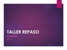 TALLER REPASO