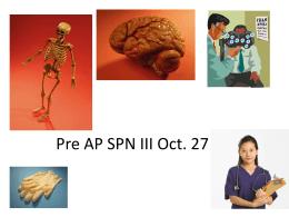 SPN III Oct. 28