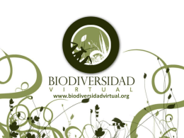 Diapositiva 1 - Biodiversidad Virtual