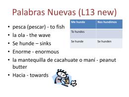Palabras Nuevas (L13 new)