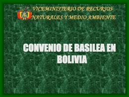 VICEMINISTERIO DE RECURSOS NATURALES Y MEDIO …