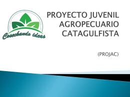 PROYECTO JUVENIL AGROPECUARIO CATAGULFISTA
