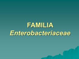 FAMILIA Enterobacteriaceae