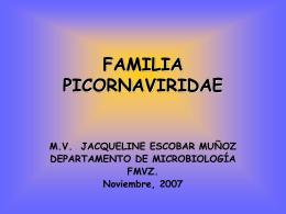 FAMILIA PICORNAVIRIDAE - Avindustrias Guatemala