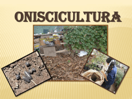 ONISCICULTURA - conozco