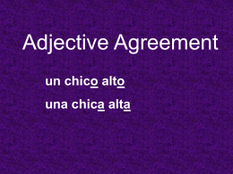 Adjective Agreement