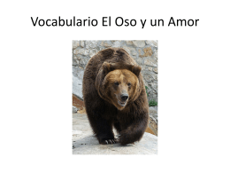 Vocabulario El Oso y un Amor - Spanish