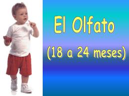 "Diapositiva 1 - CFGS "" EDUCACION INFANTIL "" 15/16 CFGM"