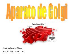 Diapositiva 1 - JUANMARTINEZ63.CMC