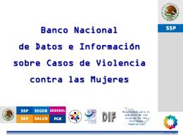 El Sistema de monitoreo de la violencia contra las mujeres