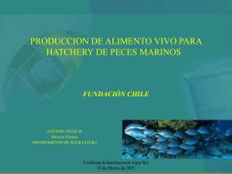 PRODUCCION DE ALIMENTO VIVO PARA HATCHERY DE …