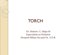 TORCH - Clases y Libros