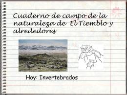 Diapositiva 1 - IES CLAUDIO SANCHEZ ALBORNOZ