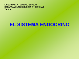 sistema endocrino - Liceo Marta Donoso Espejo