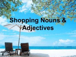 Shopping Nouns & Adjectives