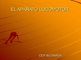 EL APARATO LOCOMOTOR - Aprendizaje significativo