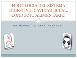 HISTOLOGIA DEL SISTEMA DIGESTIVO: CAVIDAD BUCAL, …