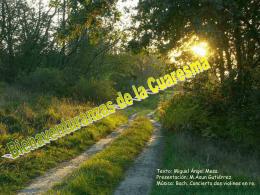 Bienaventuranzas de Cuaresma
